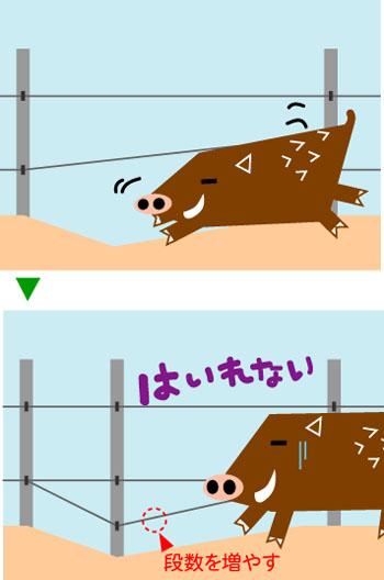 イノシシ_地面のくぼみは電線でふさぐ