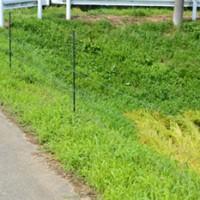 イノシシ対策用電気柵