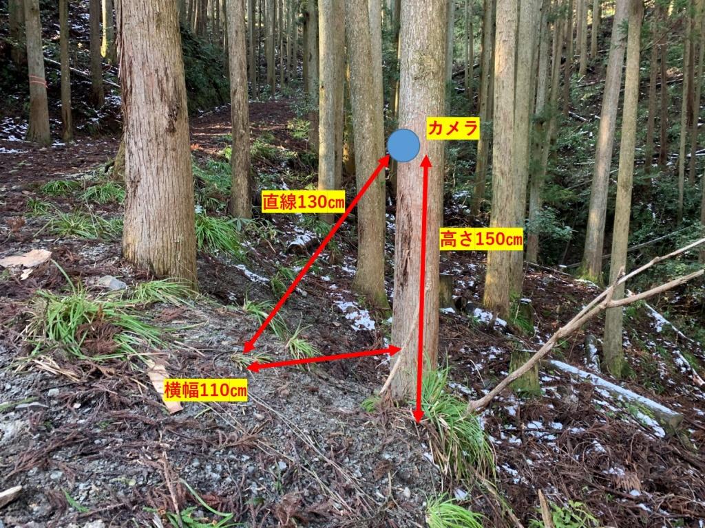 トレイルカメラ設置位置詳細