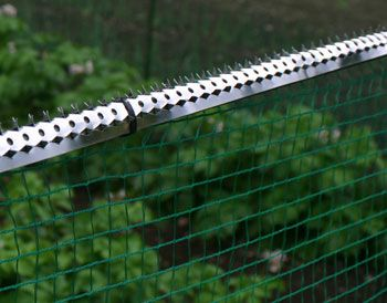 有刺鉄板フェンスの上に固定
