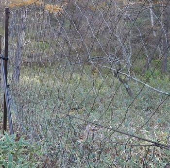 鳥獣被害対策用ネット