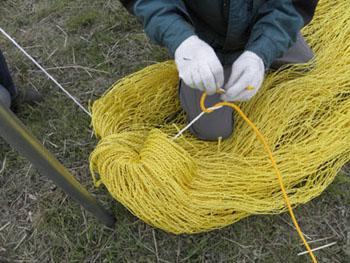 ネットに付属の専用ロープを通