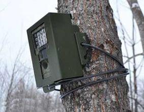 キツネ被害対策用自動撮影カメラ