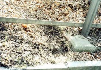 フェンス柵