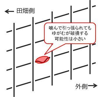 ワイヤーメッシュ設置の向き2
