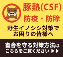 豚熱(CSF)の防疫・防除に役立つ情報ページ