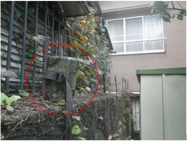 ブロック塀の上に設置したトレイルカメラ