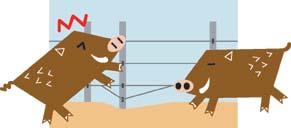効果的な柵の設  置方法2