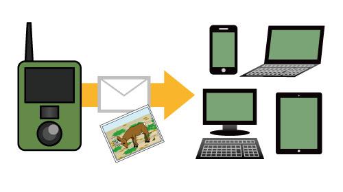 TTREL(トレル) 3G-R メールアドレスが複数指定できます